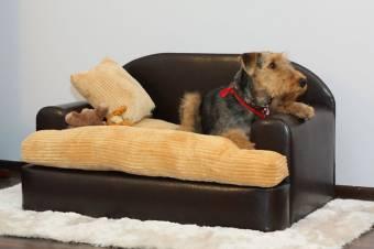 Sofa en polipiel
