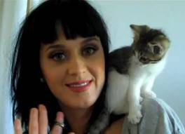 Katy y Kitty Purry