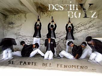Destiny boys