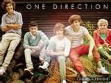ONE DIRECTION-DIRECTIONER