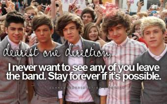 1D (One Direction)